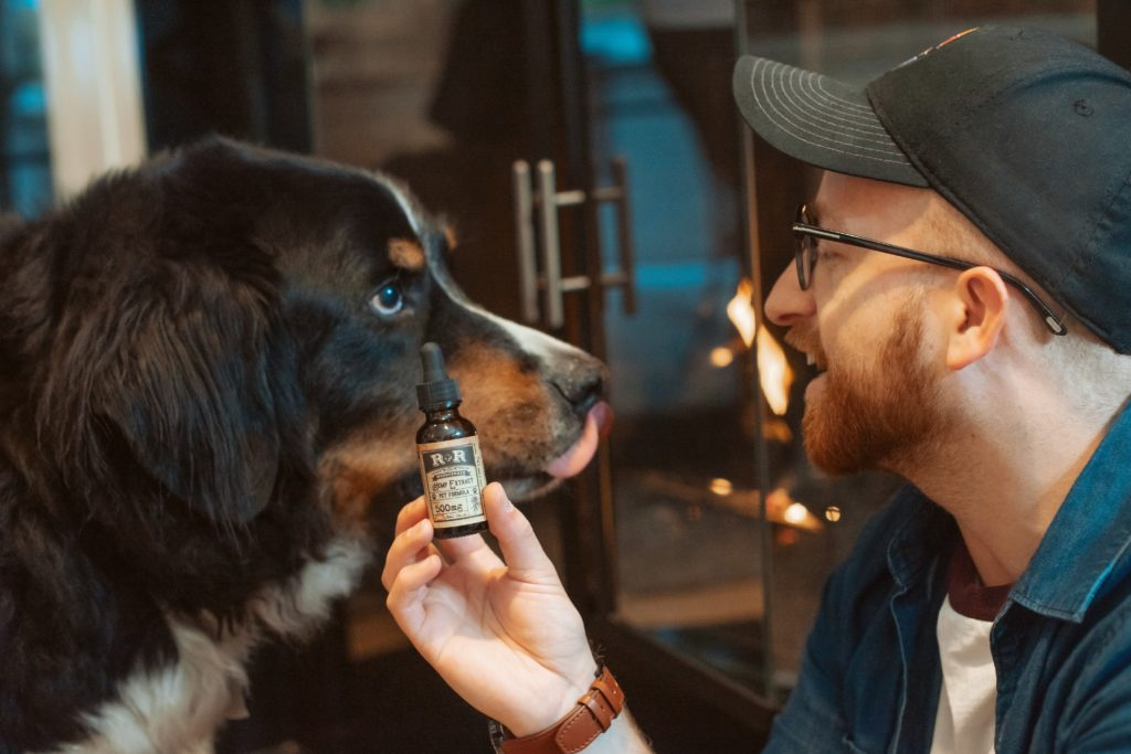 Free CBD samples for pets!